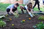 Prostějovští skauti založili komunitní zahradu