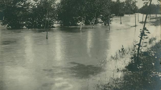 3. Zatopené stromky vokolí původního říčního koryta.