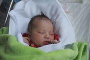 Anna Šulcová, Kostelec na Hané, narozena 17. listopadu v Prostějově, míra 54 cm, váha 3750 g