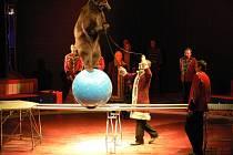Cirkus Berousek při učinkování v Prostějově. Ilustrační foto
