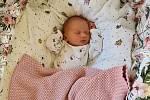 Anna Vrtělová, Polkovice, narozena 4. září 2020 v Přerově, míra 48 cm, váha 2890 g