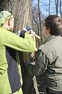 Lesopark Hloučela si prošel různými etapami. Letos slaví kulatých sto let a k jeho narozeninám mu úklidem přišlo pogratulovat na šedesát dobrovolníků.