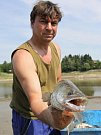 Odlov ryb na plumlovské přehradě - Zubatý candát