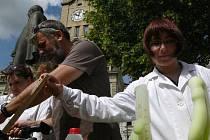 Věda v ulicích 2010