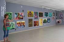 Galerie Nara funguje na Kramářské ulici od začátku června. Až do konce srpna si v ní návštěvníci mohou prohlédnout průřezovou výstavu obrazů prostějovské malířky a fotografky Zdenky Trnečkové