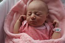 Nikol Říhová, Přerov, narozena 19. května v Prostějově, míra 50 cm, váha 3300 g
