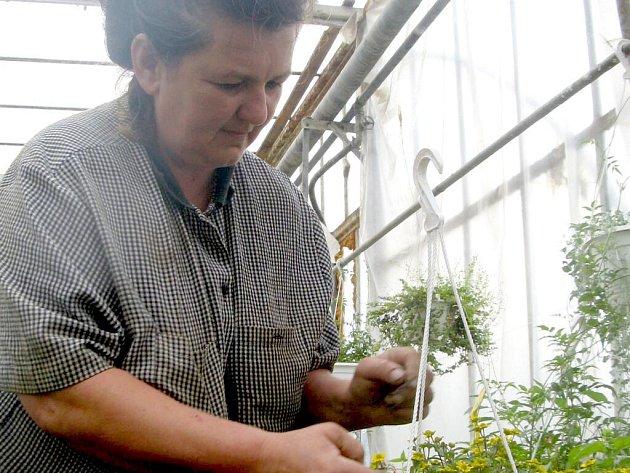 Krčmářová pracuje jako zelinářka již dvacet let.