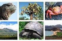 Přednáška o Ekvádoru a Galapágách