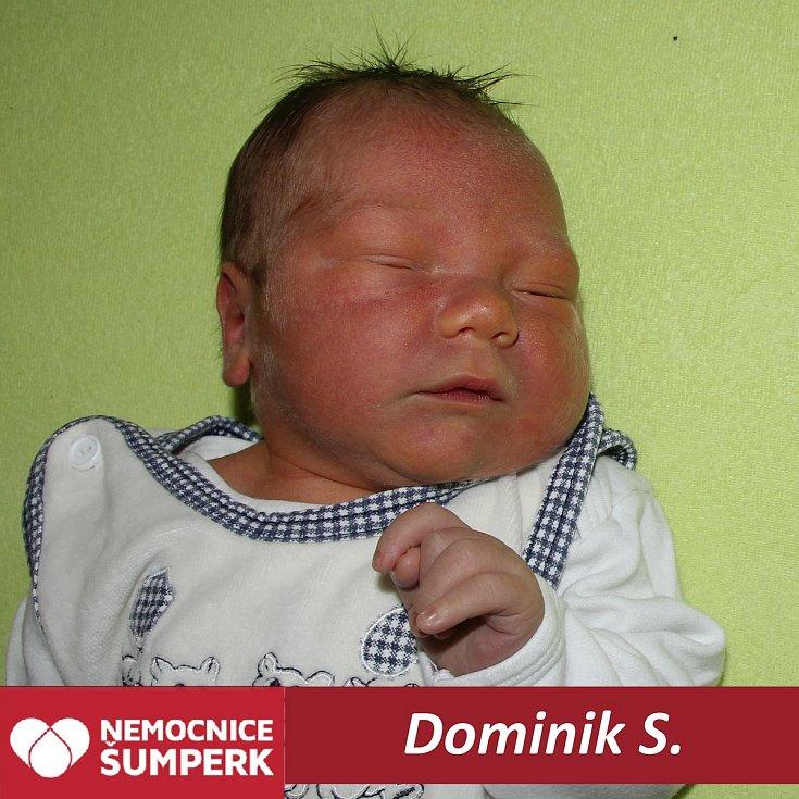 Dominik S.Loučná nad Desnou