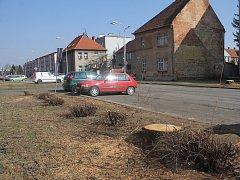 Magistrát pokračuje v revitalizaci, padly kvůli ní desítky stromů. A lidé zuří. Foto: Deník/Michal Sobecký