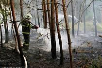 Požár lesa u Přemyslovic