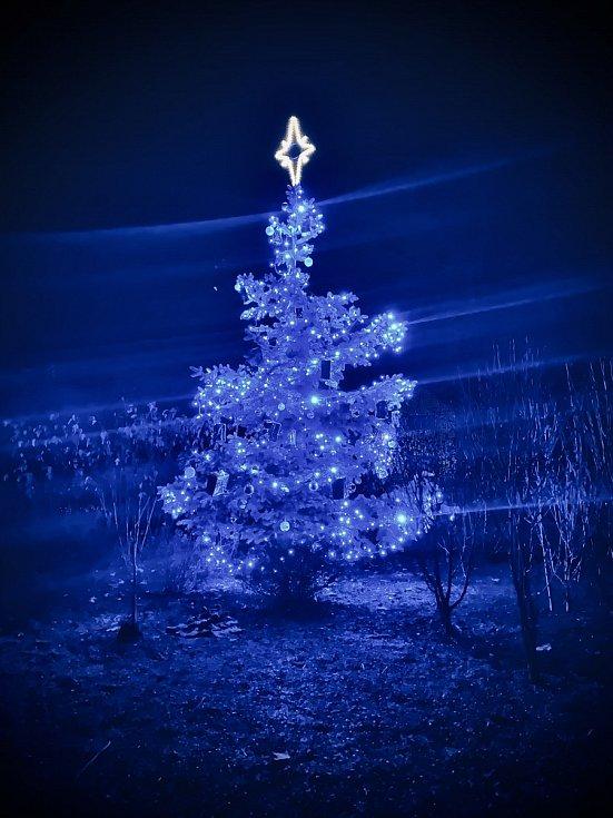 Vánoční strom 2020 - obec Řídeč