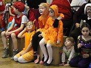 Maškarní karneval v Žárovicích