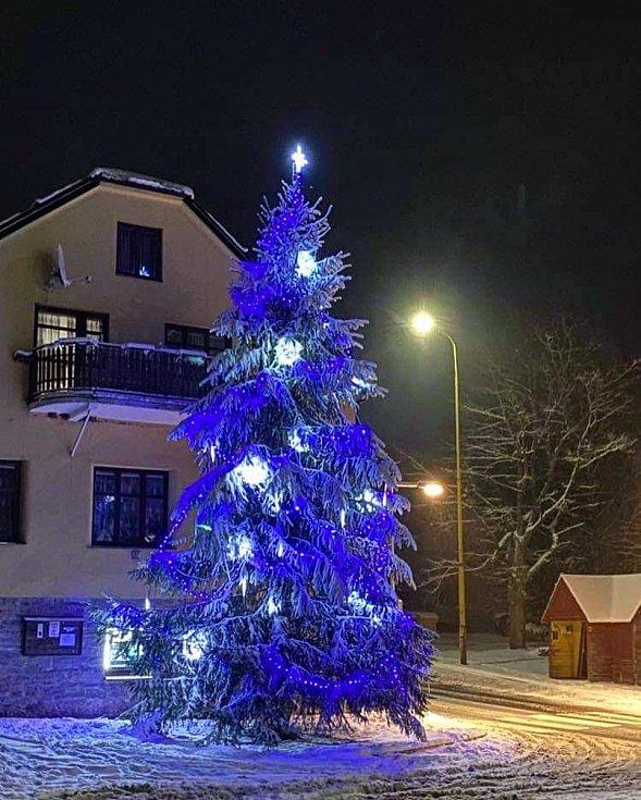 Vánoční strom 2020 v Ostružné