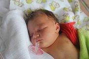 Tereza Dokoupilová, Prostějov, narozena 9. listopadu v Prostějově, míra 51 cm, váha 3850 g