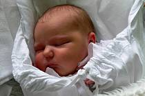 Adéla Palatková, Prostějov, narozena 25. září, 51 cm, 3650 g
