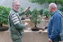 Výstava bonsají v rajské zahradě u kostela Povýšení sv. Kříže