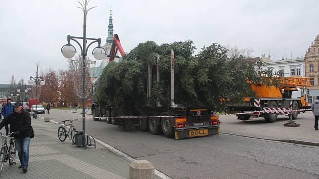 Vánoční smrk z Vrahovic už je na náměstí T. G. Masaryka. A čeká na ozdoby.