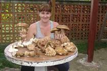 Letošní houbařská sezona 2010 podle Hany Kaňákové