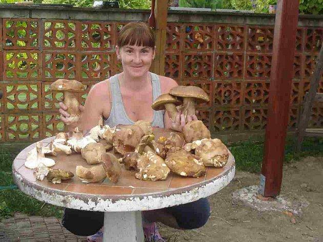 Letošní houbařská sezona 2010podle Hany Kaňákové