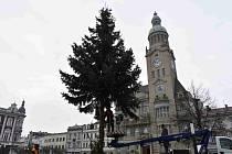 Z prostějovského hlavního náměstí zmizela vánoční dominanta, strom Horáček