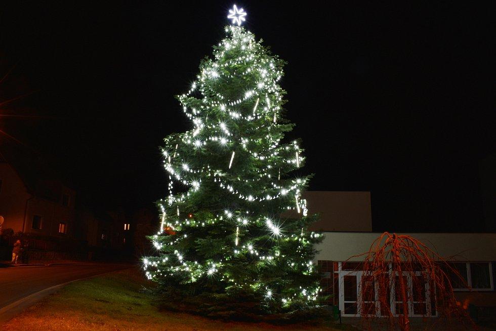 Vánoční strom v Žulové.