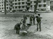 Úprava ústí rybníka vsedmdesátých letech minulého století.