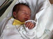 Ella Dosedělová, Prostějov, narozena 7. prosince v Prostějově, míra 51 cm, váha 3500 g