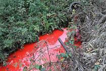 V Jednově se objevila neznámá látka v kanalizaci.