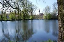 Rybník v Krasicích