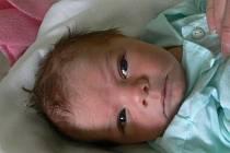 Lukáš Janík, Prostějov, narozen 11. března v Prostějově, míra 54 cm, váha 4100 g