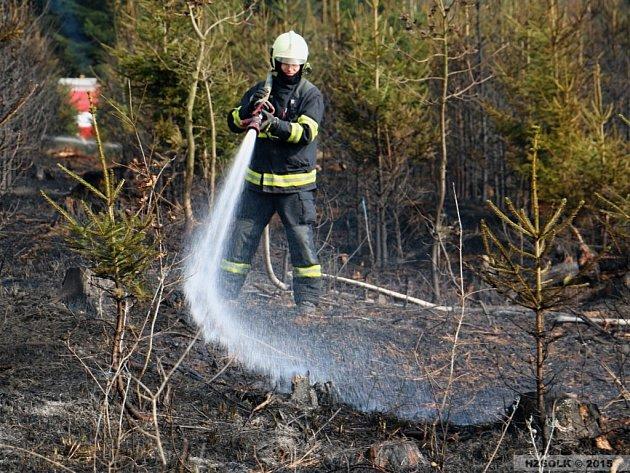 Likvidace požáru lesa u Penčic