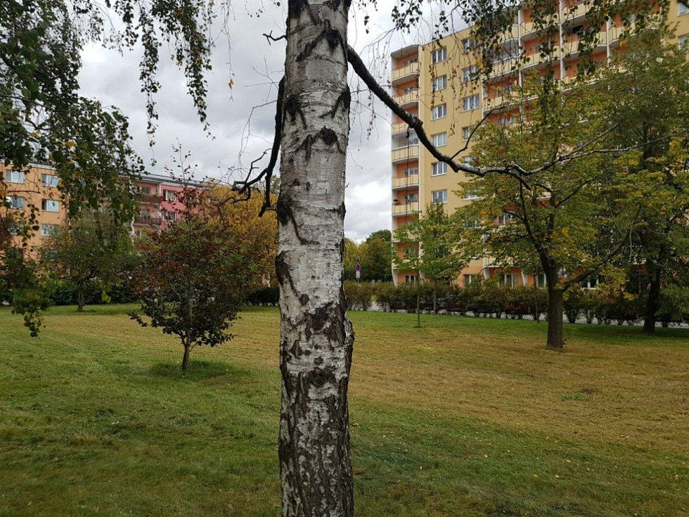 V Prostějově se podepisuje petice proti používání herbicidů.