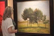 Nové přírůstky výtvarných děl jsou v těchto dnech k vidění v prostějovském Regionálním informačním centru. Výstava potrvá do neděle 4. prosince.