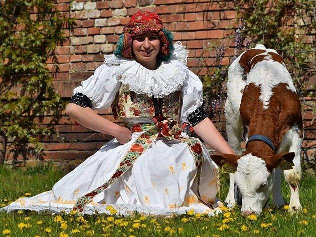 Zlatá farma ve Štětovicích hospodaří na 20ha a zaměřuje se na chov skotu a výrobu mléčných produktů.