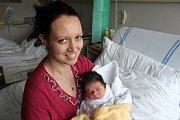 Glorie Pajerová, Prostějov, narozena 6. února 2019, míra 49 cm, váha 2900 g