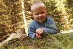 Srpnové houbaření v lesích na Protivanovsku