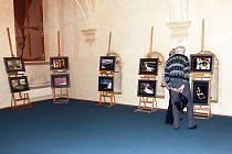 Mozaika pohledů Spolku prostějovských fotografů - výstava na půdě Senátu