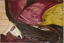 Motýli mlátiti - obraz Evžena Hanzalíka