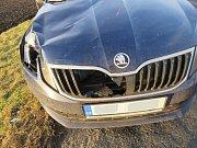 Nehoda oktávky se srncem mezi Výšovicemi a Němčicemi nad Hanou