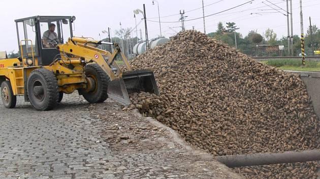 Z trhu s cukrem by měli odejít nekonkurenceschopní výrobci.