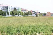 Mezi Okružní a ulicí V polích vyroste během roku nový park.