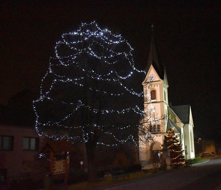 Vánoční strom 2020 v Držovicích