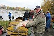 URODILO SE. Letošní výlov prostějovského rybníka rybáře mile překvapil.