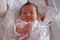 Daniela Pankivová, Seloutky, narozena 5. února v Prostějově, míra 49 cm, váha 4000 g