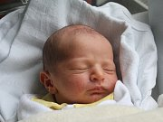 Daniel Horák, Kostelec na Hané, narozen 18. října v Prostějově, míra 52 cm, váha 3200 g