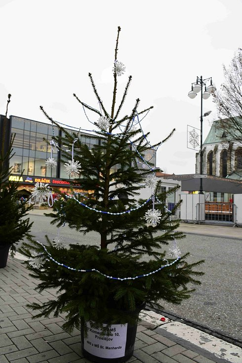 Zdobení vánočního stromu a malých vánočních stromků v Prostějově - 27. listopadu 2019