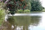 U Nebeského rybníka
