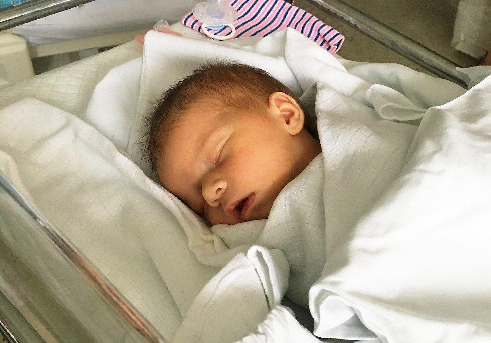 Ester Antlová, Dobromilice, narozena 23. září v Prostějově, míra 50 cm, váha 3000 g