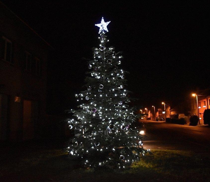 Vánoční strom 2020 v Mostkovicích